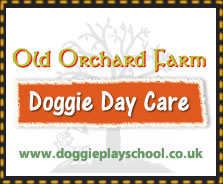 Old Orchard Farm Doggie Day Care